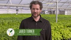 https://www.youngliving.com/en_US Our Seed to Seal® journey begins at Young Living's farm in Mona, Utah. In this video that introduces our pure essential oils, Chief Operating Officer Jared Turner walks us through a plant's life on the farm. Using the methods developed by Young Living Founder D. Gary Young, our first round of tests begins with the seeds, the plants they grow into, and after distillation—quality essential oils. Learn more about Young Living's proprietary Seed to Seal co...