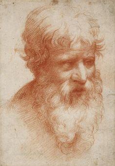 Parmigianino (Francesco Maria Mazzola)(1503–1540), Head of a bearded man towards the right, ca. 1523/25 (?). Red chalk, on paper; 189 × 131 mm. Städel Museum, Frankfurt am Main.