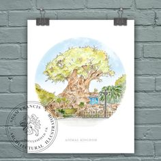 Animal Kingdom | Tree of Life Art prints. High Quality, Limited Edition, 'Fine Art' and 'Photographic' prints taken from my original detailed illustration & watercolor. This product listing is for HIGH QUALITY prints of my detailed Animal Kingdom, Tree of Life illustration and watercolor. It took me around 30 hours to complete from my studio in Macclesfield, Cheshire, UK. It is highly detailed and precise. I offer TWO PRINTING OPTIONS- ALL Professionally Printed. • High Quality, Limited...