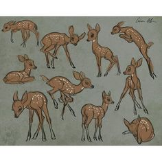 aaronblaiseart: Sketching young deer today. #deer #fawn #drawing #sketch