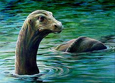 Igopogo- Canadian cryptid: a lake monster said to dwell in Lake Simcoe, Ontario, Canada. It was described as having a plesiosaur-like body with a dog-like head.