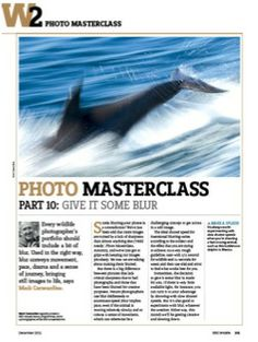 Photo Masterclass part 10: Give it some blur | Discover Wildlife