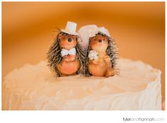 Cute Hedghog Cake Topper // Farm Kitchen Wedding // Poulsbo, WA | Tyler and Hannah Photography