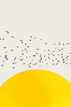 Artistieke iIlustratie   A Thousand Birds   Europosters.nl Paintings Famous, Easy Paintings, Bird Prints, Wall Art Prints, Sun Drawing, Fireplace Art, Cubist Art, Photoshop Rendering, Bird Poster