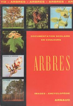 Documentation scolaire 112 : Arbres Childhood, Year 2, Nature, Learning French, Bud, Childhood Memories, Documentaries, Herb Box, Language