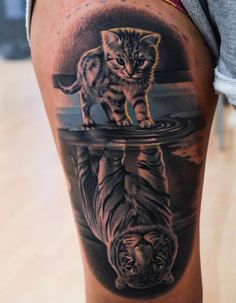 Martin Sjöberg cat with tiger reflection tattoo Gato Martin Sjöberg con tatuaje de tigre reflejo. Best Leg Tattoos, Lion Head Tattoos, Wolf Tattoos, Animal Tattoos, Life Tattoos, Body Art Tattoos, New Tattoos, Small Tattoos, Tattoos For Guys