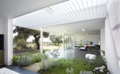 House in an Oak Grove by Murado