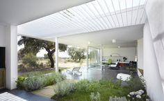 House in an Oak Grove by Murado