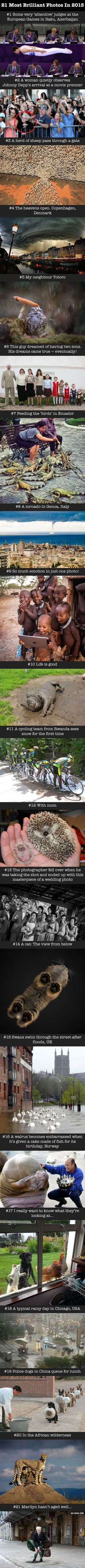 21 Brilliant Photographs Which Hugely Impressed The Internet In 2015 #photography #9gag