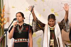"""Indigenous struggles unite from Standing Rock to the Sierra Norte of Puebla From the Editors of Desinformémonos February 20,2017 Trump's """"xenophobic and aggressive policy against Mexico"""" has pla…"""