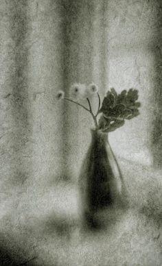 #still #life #photography • photo: Холодное лето. | photographer: Сергей Бузук | WWW.PHOTODOM.COM