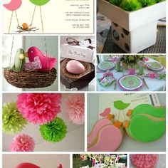 Bird theme - baby shower