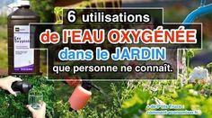 Oui, oui, vous avez bien lu !On peut vraiment utiliser de l'eau oxygénée dans le jardin.Et en plus, il y a des tas d'avantages à l'utiliser. Pourquoi ?Car l'eau oxygén&eacu