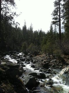 Creek at Stewart Mineral Springs where the conference was held, Mount Shasta area