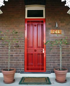 Storm Door Painted To Match Front Security Screen Doors, Security Screen Door, House Exterior, Red Door, Screen Door, Windows And Doors, Door Design, Security Door, Exterior House Colors