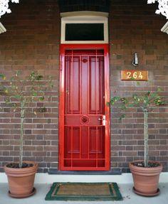 38 Best Security Door Images Security Door Doors Steel