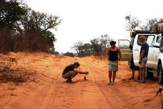Red Sand of Chobe National Park