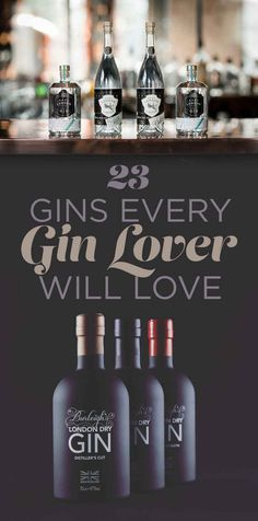23 Gins Every Gin Drinker Will Love