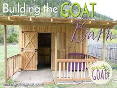 Building the Goat Barn                                                                                                                                                     More