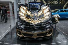 Trans Am Worldwide Takes on the Demon With a Firebird Drag Car - MotorTrend Crate Motors, Pontiac Cars, Firebird Trans Am, Thing 1, Car Deals, Car Prices, Drag Cars, Love Car, Amazing Cars