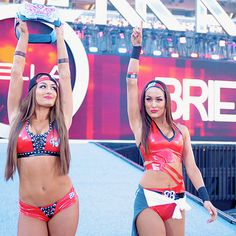 whos dating the bella twins