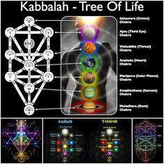 Simbología ... El Árbol de la Vida | .