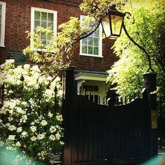 (The Bottom of the Ironing Basket: London Life)