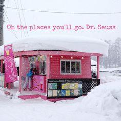 A vision through the snow. Hakuba, Japan, Alps - the Pink Pancake Parlour...