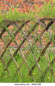 Woven willow screen fence, England UK - Stock Image