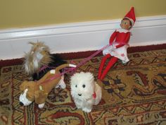 Elf on the shelf : Elf dog walker