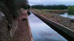 Towerwater Aan De Breede: The lure of Leiwater