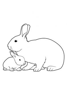 Coloriage Lapin 3 | coloriage | Pinterest