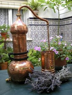 "Essential oil distillation at home? Easy with Lavender and ""CopperGarden®"" distilling systems"