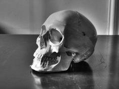 Totenkopf - Skull by Wiggles20 on DeviantArt