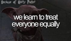 Because of Harry Potter