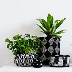 Recycled plastic bags into baskets.