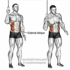 Dumbbell SIDE bend exercise! #rippedabsworkout