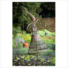 GAP Photos - Garden & Plant Picture Library - Scarecrow in the vegetable garden at Ballymaloe Cookery school - GAP Photos - Specialising in horticultural photography