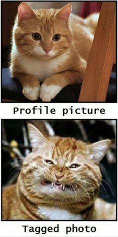 This is sooooo true about Facebook photos.