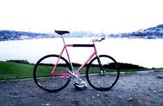 [Image: viana-cycles-custom-track-2751_1.jpg]