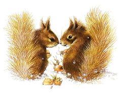 Squirrels foraging for acorns by Marjolein Bastin