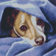 Cross Stitch Chart Jack Russell Terrier Dog Cold? Me?