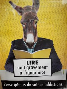 Lol... dans la vitrine de la librairie Garin à Chambéry