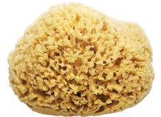 Natural Sea Sponge - A sustainably harvested, renewable resource for the bath: holds a generous amount of suds, helps create lather, and provides gentle skin exfoliation. Harvested from the Caribbean. (more info) $18.00