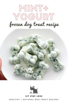 Frozen Mint + Yogurt Dog Treats For Doggy BreathYou can find Healthy dog treats and more on our website.Frozen Mint + Yogurt Dog Treats For Doggy Breath Dog Biscuit Recipes, Dog Treat Recipes, Healthy Dog Treats, Dog Food Recipes, Doggie Treats, Food Tips, Labrador Retriever, Golden Retriever, Homemade Dog Cookies