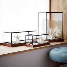 Alternative to a lantern. Love this display option. Perfect for in an office, or living room.  Wood + Glass Display Cases