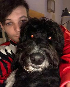 Louis and Zayn Xd Zayn Malik, Niall Horan, Liam Payne, One Direction Niall, One Direction Singers, Harry Styles, Troy Austin, Louis Tomilson, Louis And Harry