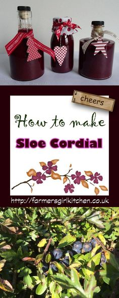 How to make sloe cordial