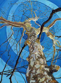 Sycamore  Acrylic on Canvas 30 x 40 $ 3,000