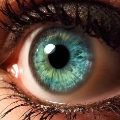 Ideas eye photography close up human for 2019 - Ideas eye photography c. - Ideas eye photography close up human for 2019 – Ideas eye photography c… – Idea - Beautiful Eyes Color, Pretty Eyes, Cool Eyes, Photo Oeil, Foto Macro, Eye Close Up, Aesthetic Eyes, Makeup Aesthetic, Photos Of Eyes